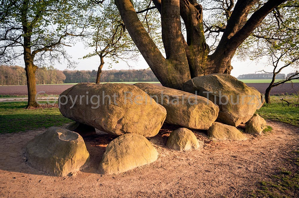 Megalithic tomb stone grave, The Netherlands