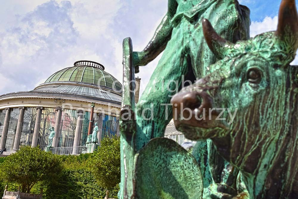 Botanical garden, Brussels, Belgium. For editorial use only.